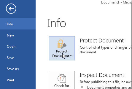 protect Word 2013 documents with password