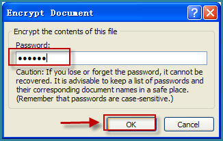 encrypt word document