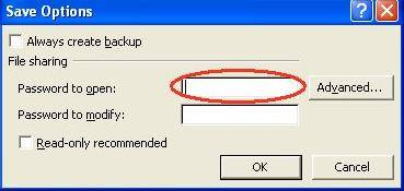 Word password removal in MS Excel 2007