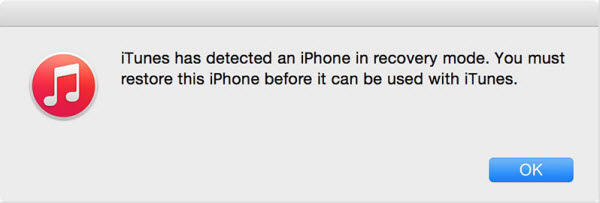 iPhone recovery mode detected