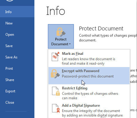 password protect Microsoft Office 2013