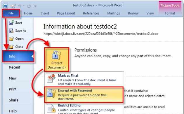 password protect microsoft office 2010