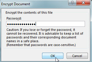 password protect MS Office 2013 file