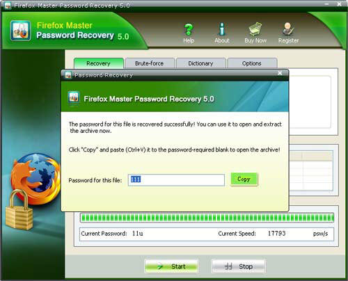 view Firefox Master Password