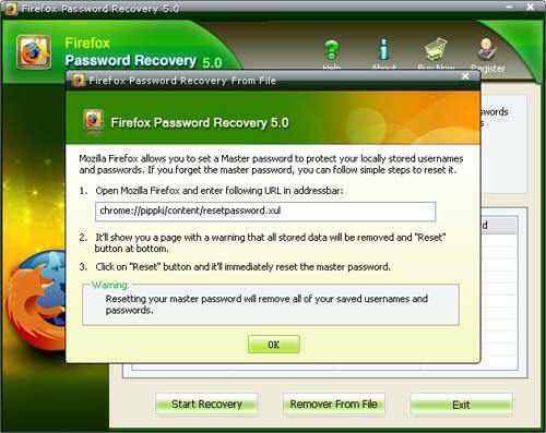 firefox master password reset
