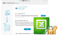 MS Excel Password Recovery