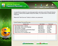 Recover Internet Explorer Password Screenshots