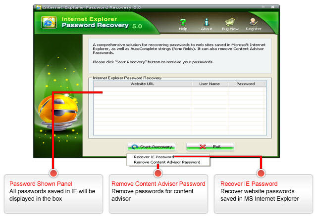 Internet Explorer Password Recovery Screenshots